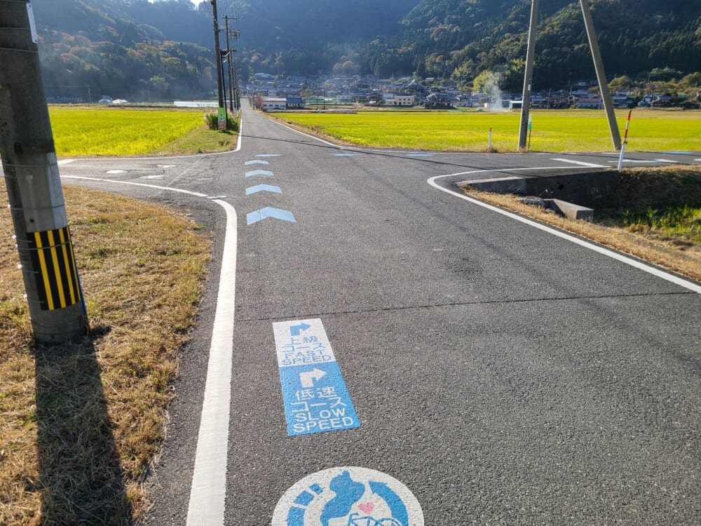 琵琶湖湖北 サイクリングコースの青い矢印