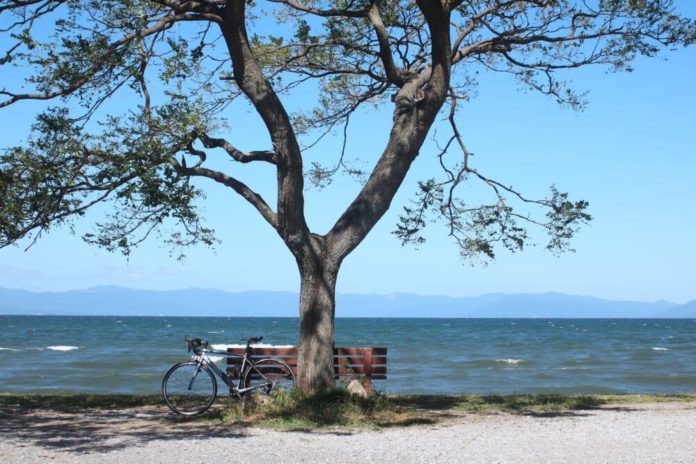 琵琶湖「あのベンチ」