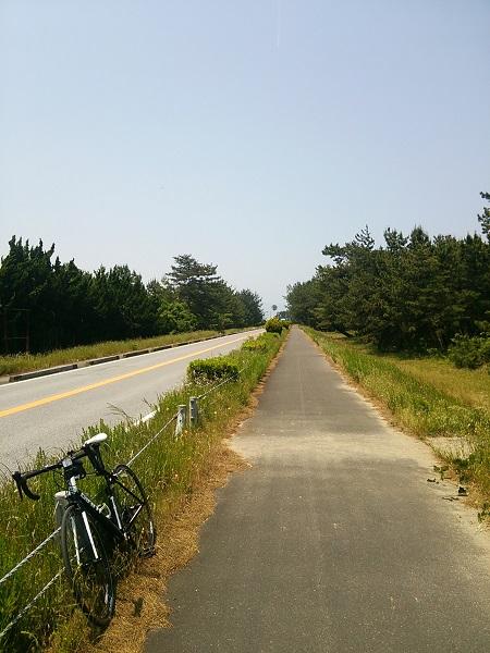 琵琶湖自転車道