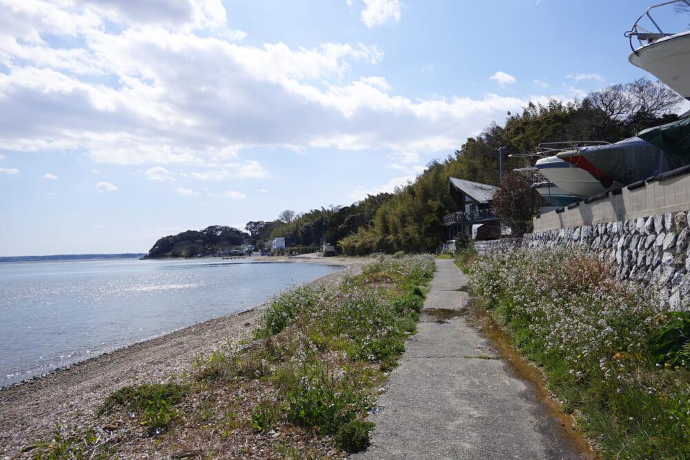 浜名湖一周サイクリング ハマイチ 湖北海岸沿いの道