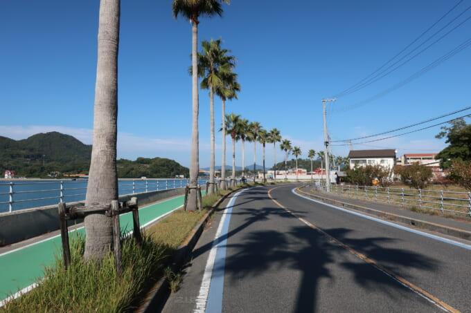 生口島のヤシの木が並ぶ道路
