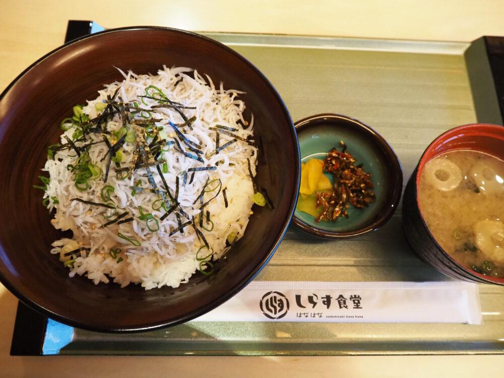 【しらす食堂】佐田岬の新鮮な魚介を堪能!三崎港「はなはな」の有名食堂