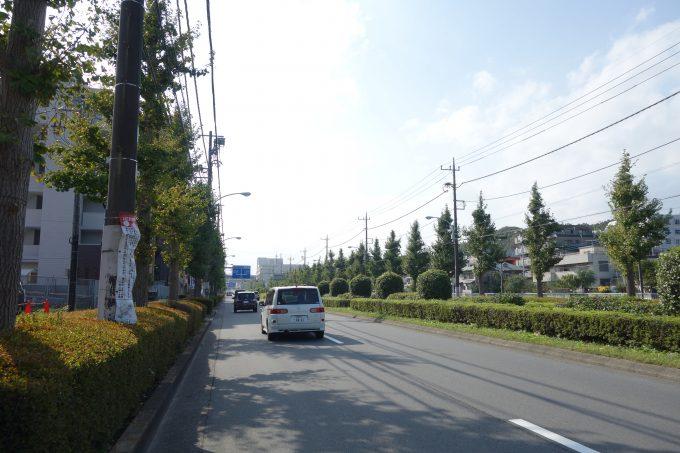 2020東京オリンピックロードレース 多摩ニュータウン通り
