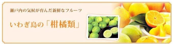 ゆめしま海道岩城島 柑橘のイメージ